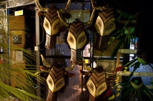 Backstage photography at Disney's The Lion King in London