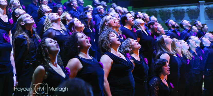 One Night Only: Pink Singers at Cadogan Hall