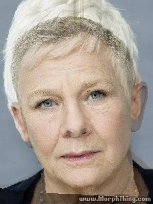 Showbiz Face-Morph Quiz   From The Box Office