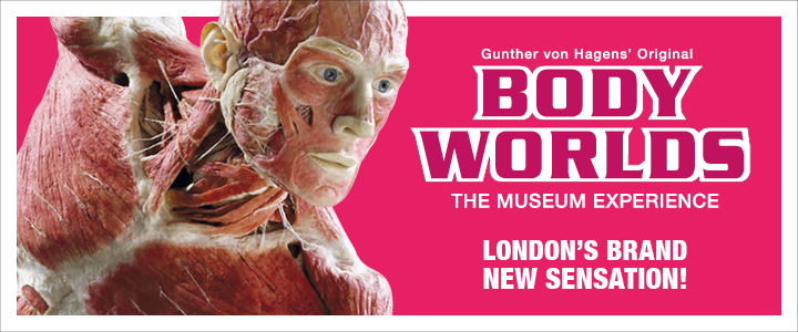 BODY WORLDS: London's latest unmissableattraction